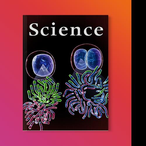 Illustration: Chromosome Cover Art